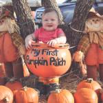 Flower Mound Pumpkin Patch Adventure