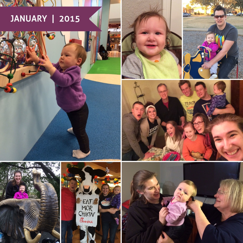 A Month in Photos | January 2015 - Wit & Wander