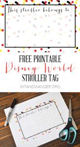 Disney Stroller Tag - Wit & Wander Shorter Pinterest