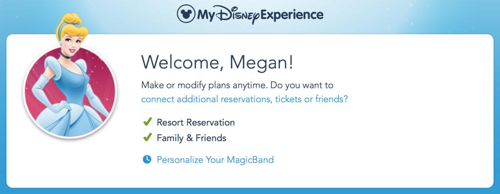 My Disney Experience - Wit & Wander