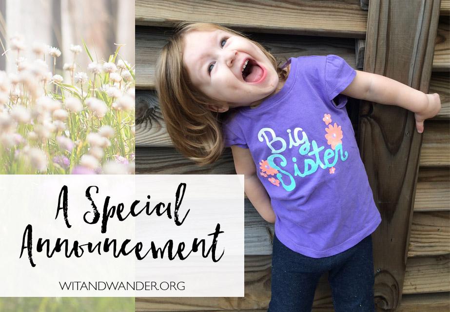 Kohl's Big Sister Shirt Pregnancy Announcement
