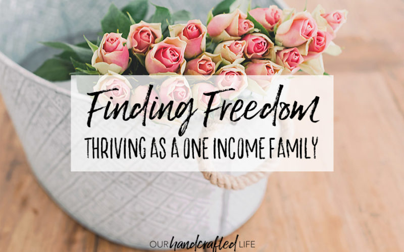 Finding Freedom – Thriving as a One Income Family