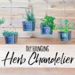 DIY Hanging Herb Chandelier