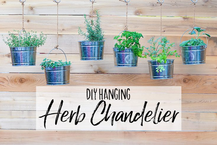 DIY Hanging Herb Chandelier