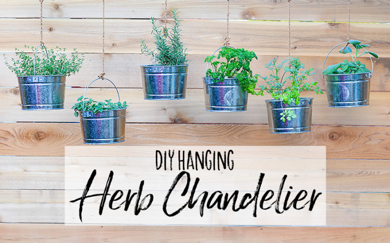 DIY Hanging Herb Chandelier - Our Handcrafted Life