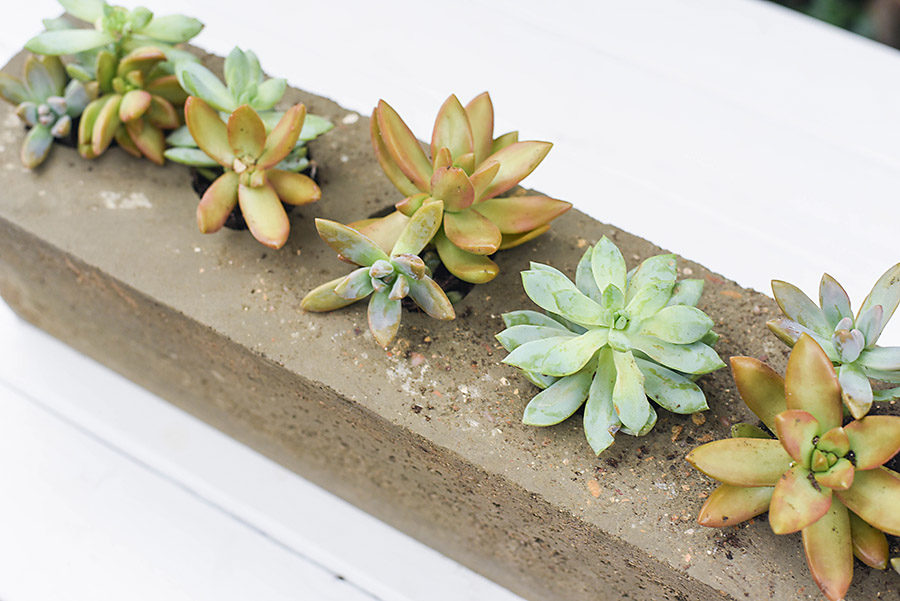 DIY Concrete Sugar Mold - Our Handcrafted Life