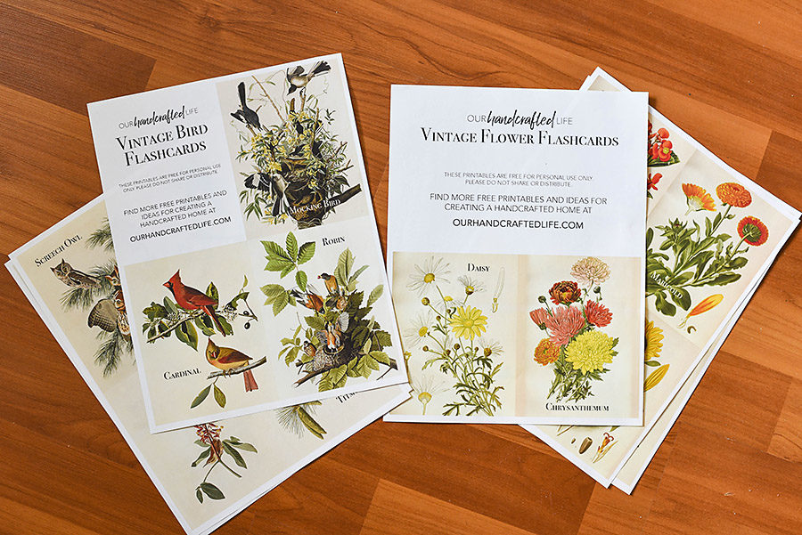 Vintage Science and Nature Flash Cards - Our Handcrafted Life