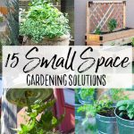 15 Small Space Gardening Solutions - Our Handcrafted Life