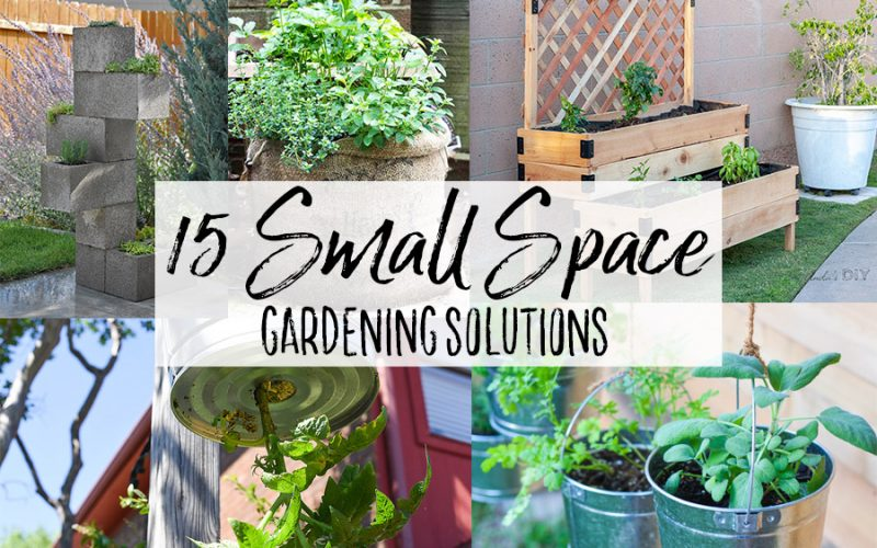 15+ DIY Small Space Gardening Solutions