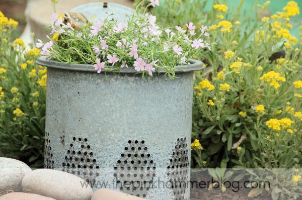 Creative Container Gardening - DIY Talent The Pink Hammer Blog