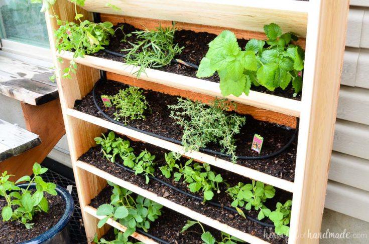 DIY Vertical Garden with Drip Watering System