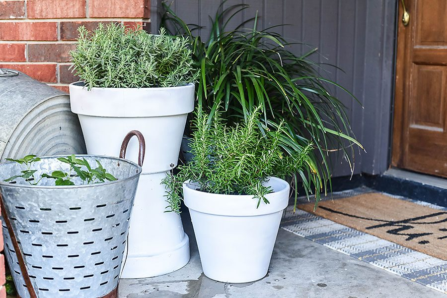 5 Plants That Repel Mosquitoes - Our Handcrafted Life Summer Front Porch Refresh