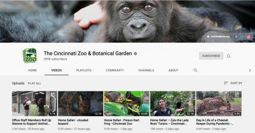 The Best Educational YouTube Channels - Cincinnati Zoo